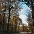 Carretera a Roncesvalles